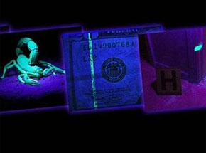 Ультрафіолетові ліхтарі