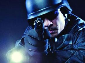 Полицейские фонари